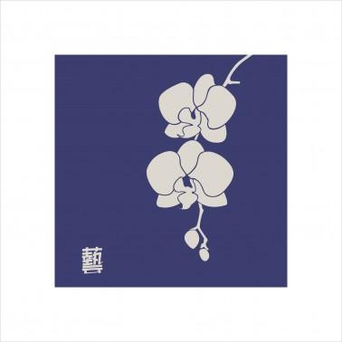 Zen Orchid 1