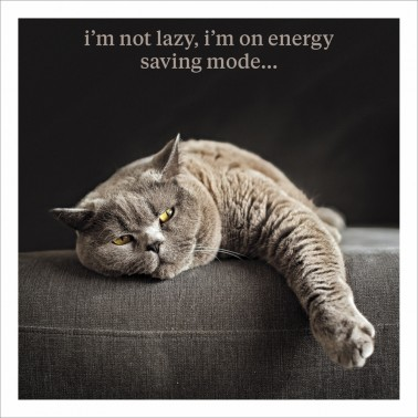 Energy Saving Mode