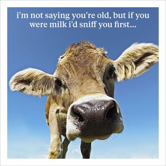 If You Were Milk