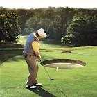 Fantasy Golf