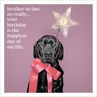 Brother-in-Law - Your Birthday