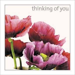 Thinking of You - Peonies
